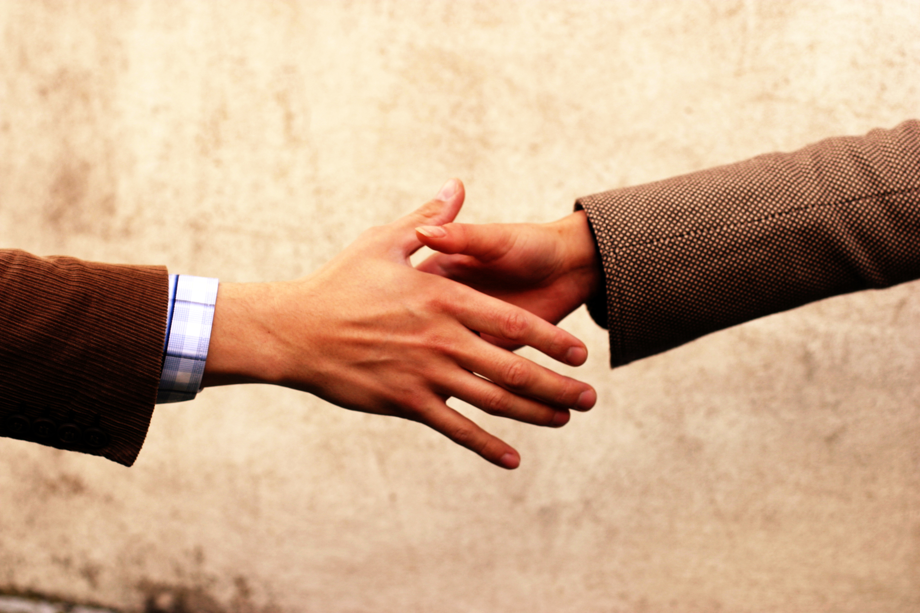 How to Deal With Cultural Differences in an Organization